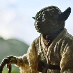 Working Wisdom - Yoda