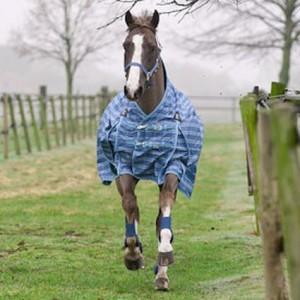 Regendeken paard